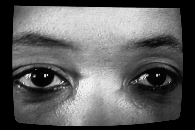 Creating a Different Image: Portrait of Alile Sharon Larkin (1989)