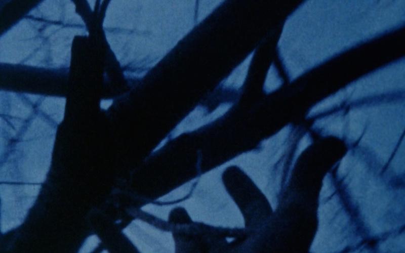 Anticipation of the Night (1958)